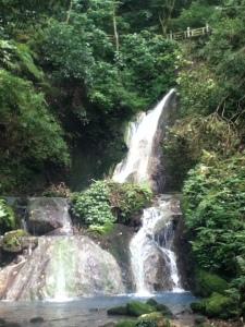 Hidden Waterfall in Yangming Park